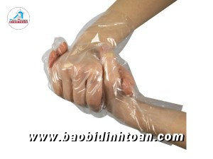 Disposable-Plastic-Gloves.jpg